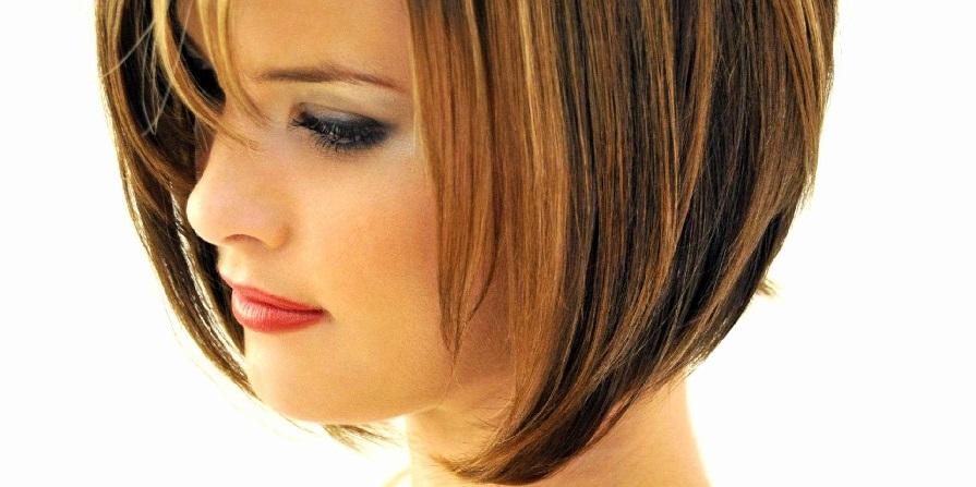 Tremendous About Graduated Haircut Melispot Schematic Wiring Diagrams Phreekkolirunnerswayorg